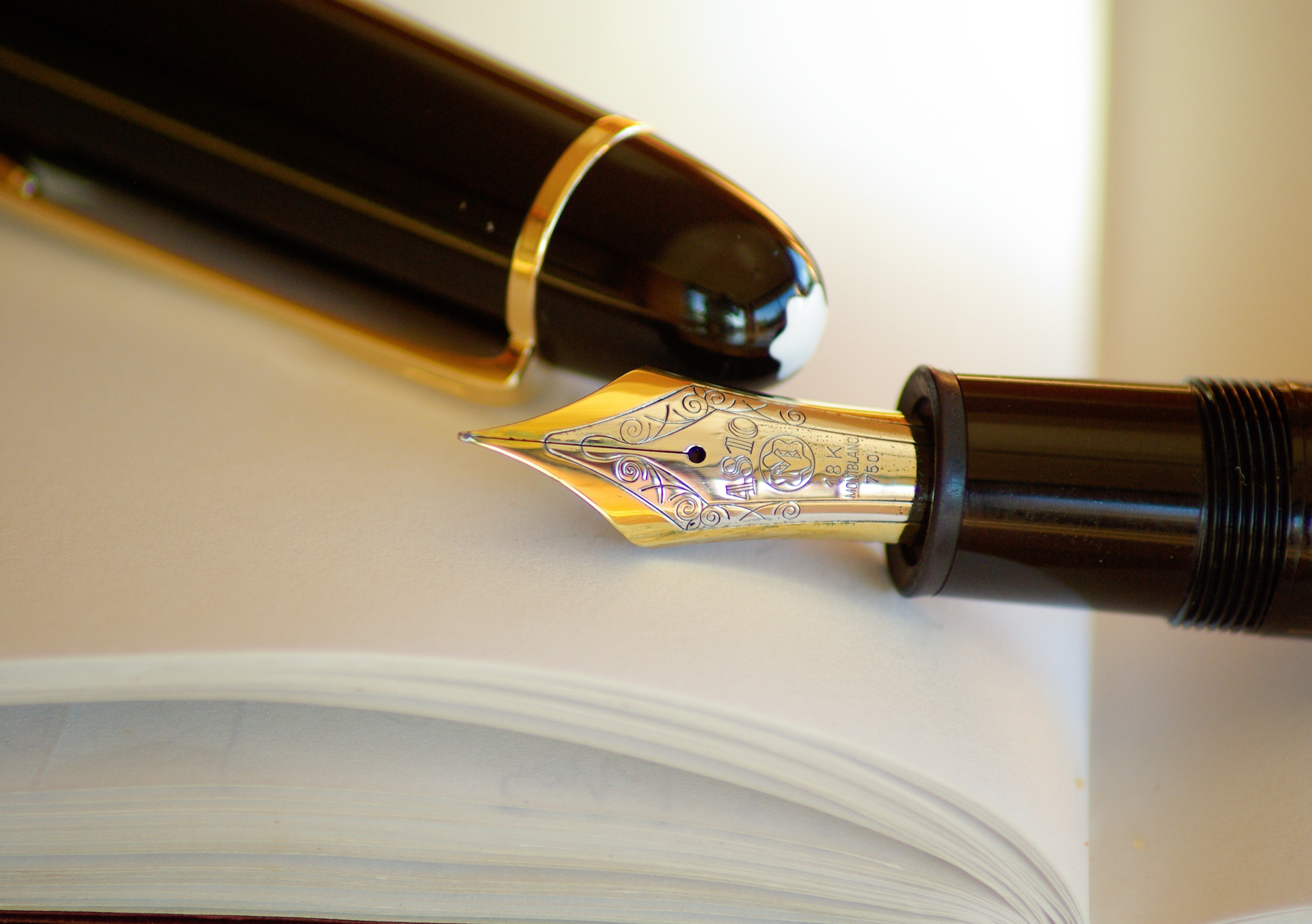 calligraphy decorative fountain pen 39065